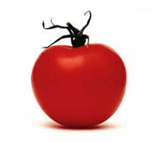 Hermanns Tomaten